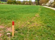 2,5 mln Polaków stanie się właścicielami gruntów
