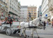 Prąd zamiast zwierząt – Wiedeń ma nietypowe rozwiązanie