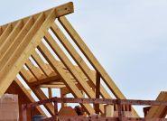 Czy domy z drewna staną się nowym trendem w budownictwie wielorodzinnym?