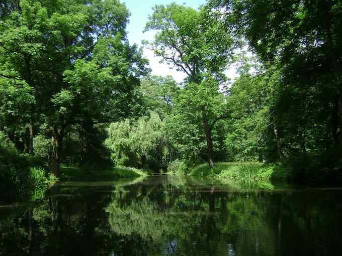 Natura w kieszeni, czyli współczesna zieleń miejska