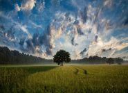 Ziemia – pomysł na inwestycję