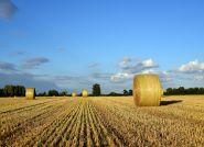 Ciągniki rolnicze Kubota - najwyższa jakość i doświadczenie