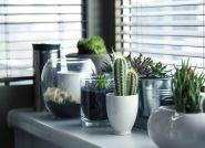 Wybór okien do domu – koszty, na co zwrócić uwagę?