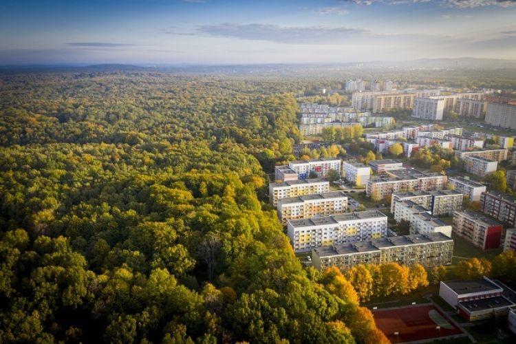Deweloperzy we wrześniu rozpoczęli budowę 17 tys. mieszkań