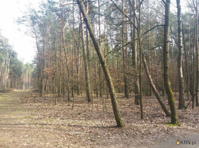 Działka Władysławów 10 193.00m2, działka na sprzedaż