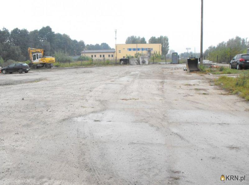 Lokal użytkowy Toruń 5 000.00m2, lokal użytkowy do wynajęcia