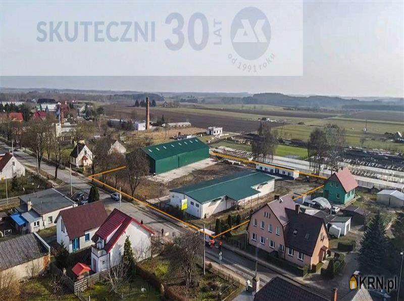 Lokal użytkowy Siemyśl 1 580.00m2, lokal użytkowy na sprzedaż