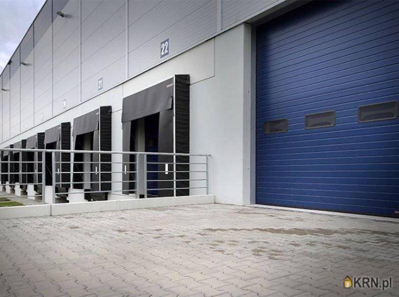 Lokal użytkowy Miękinia 3 500.00m2, hale i magazyny do wynajęcia