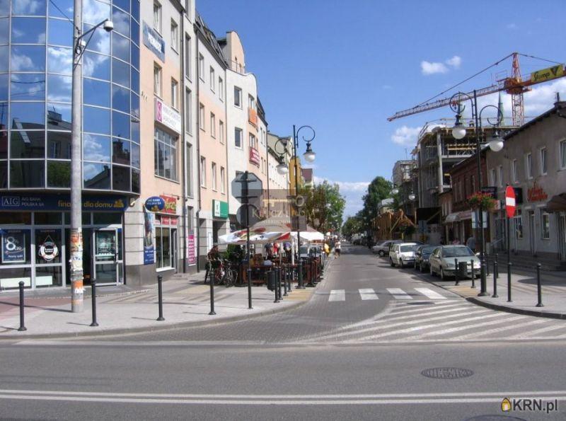 Lokal użytkowy Pruszków 360.00m2, lokal użytkowy na sprzedaż