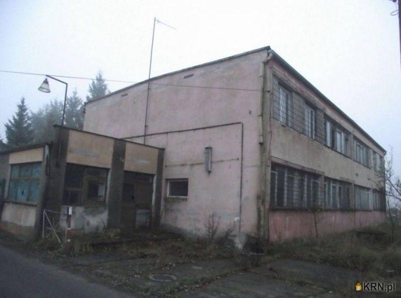 Lokal użytkowy Nowogród Bobrzański 600.00m2, lokal użytkowy do wynajęcia