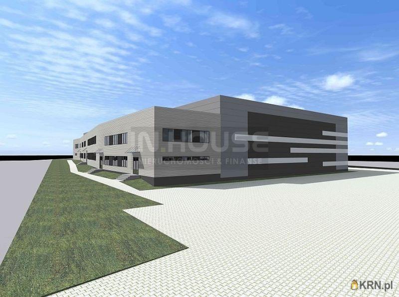 Lokal użytkowy Dołuje 2 500.00m2, hale i magazyny do wynajęcia