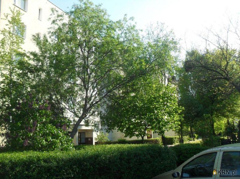 Dom Toruń 370.00m2, dom na sprzedaż