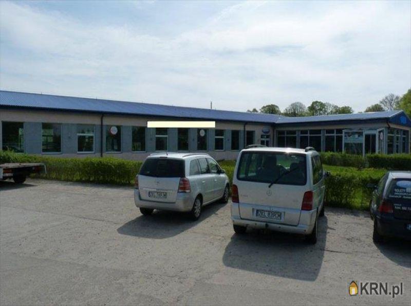 Lokal użytkowy Czernin 968.00m2, hale i magazyny na sprzedaż