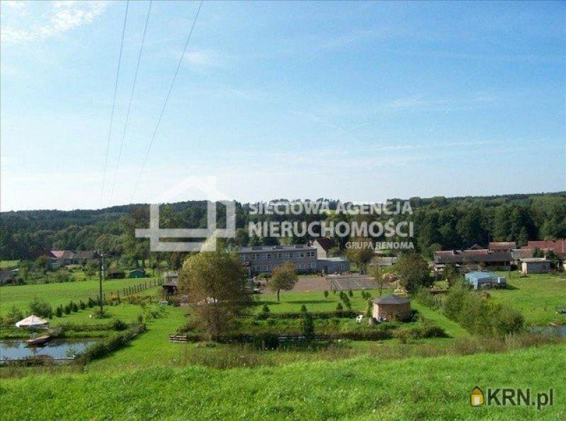 Lokal użytkowy Buśnia 612.40m2, lokal użytkowy na sprzedaż