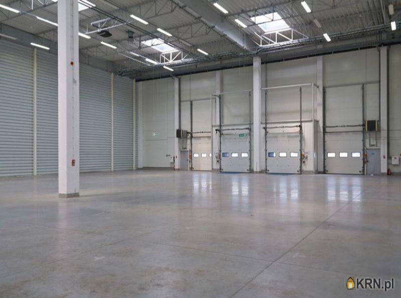 Lokal użytkowy Kobierzyce 2 767.00m2, hale i magazyny do wynajęcia