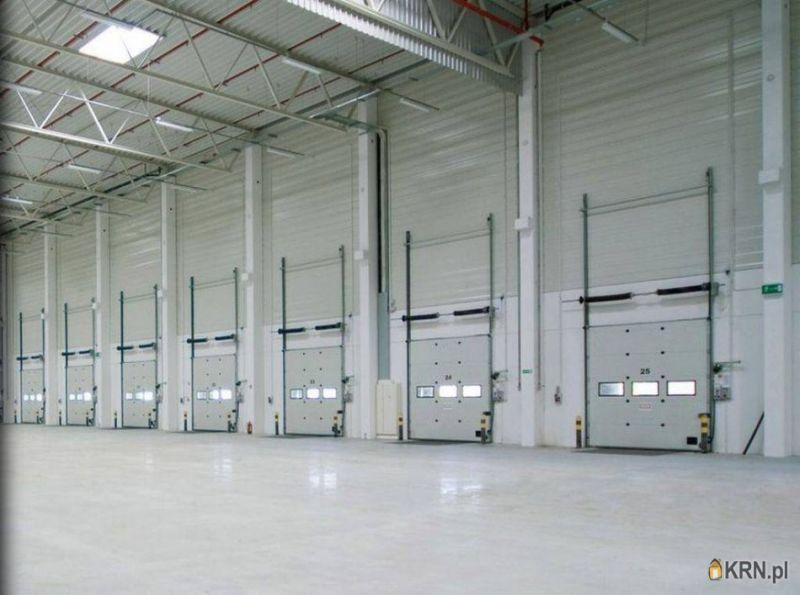 Lokal użytkowy Łazy 6 491.00m2, hale i magazyny do wynajęcia