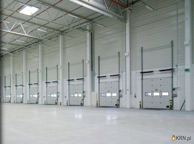 Lokal użytkowy Magnice 3 000.00m2, hale i magazyny do wynajęcia