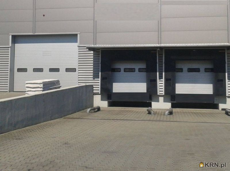 Lokal użytkowy Gliwice 1 000.00m2, hale i magazyny na sprzedaż