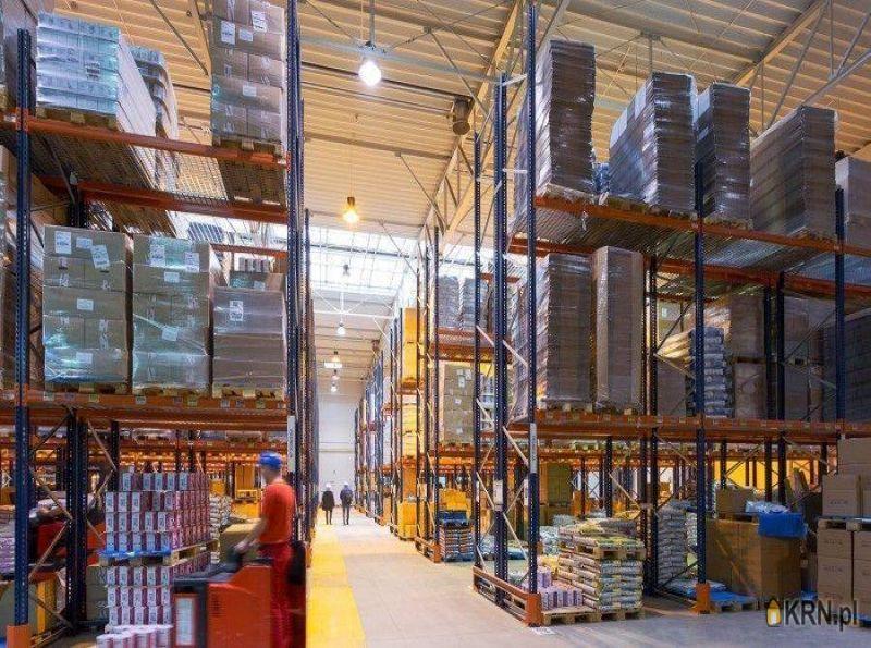 Lokal użytkowy Poznań 2 200.00m2, hale i magazyny do wynajęcia