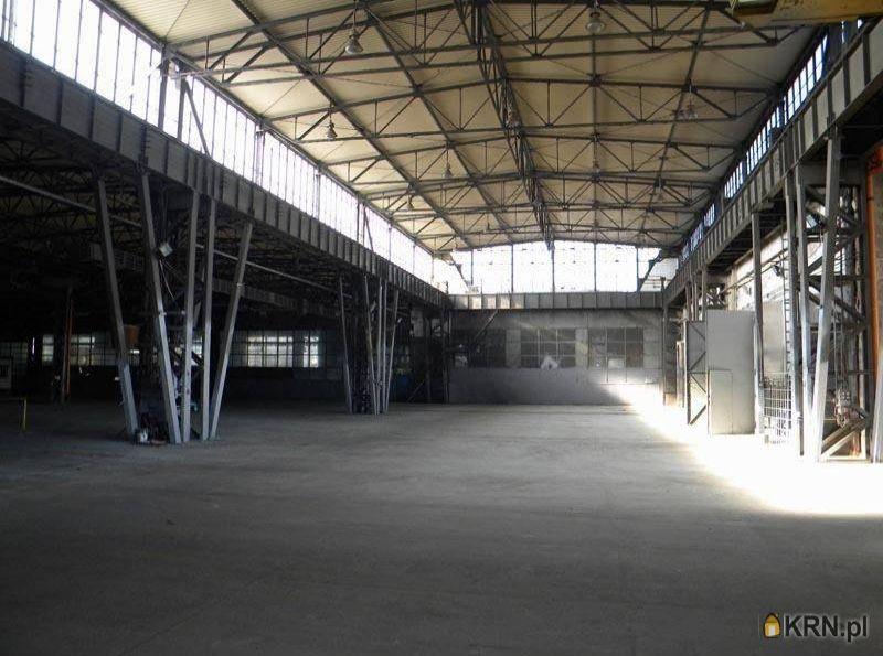Lokal użytkowy Katowice 16 000.00m2, lokal użytkowy do wynajęcia