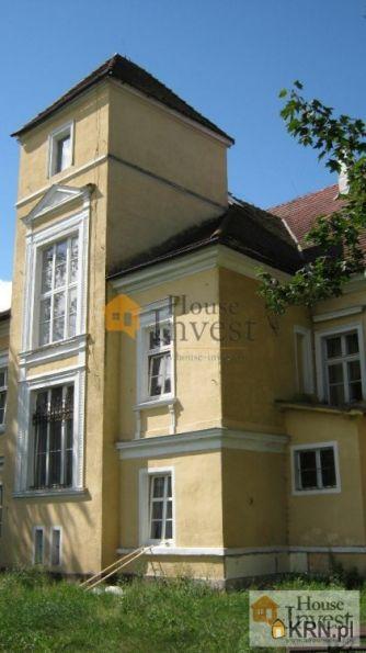 Lokal użytkowy Pątnówek 800.00m2, lokal użytkowy na sprzedaż