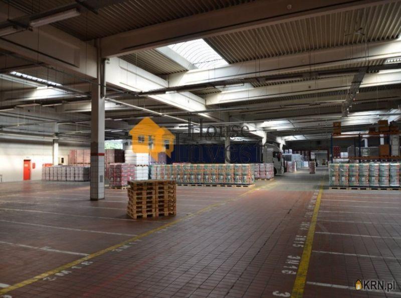 Lokal użytkowy Wrocław 1 500.00m2, hale i magazyny do wynajęcia