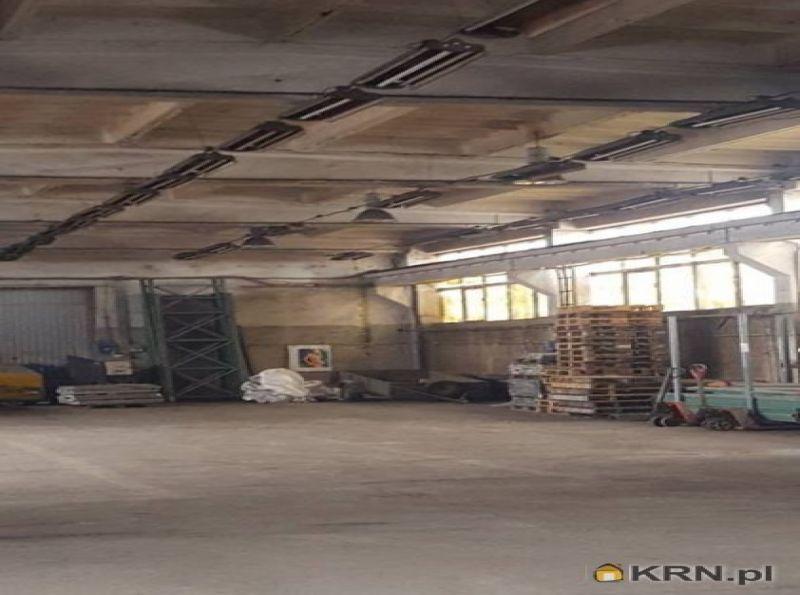 Lokal użytkowy Kalisz 430.00m2, hale i magazyny do wynajęcia