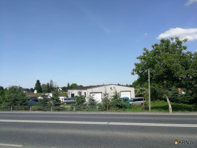 Lokal użytkowy Niepołomice 330.00m2, lokal użytkowy na sprzedaż