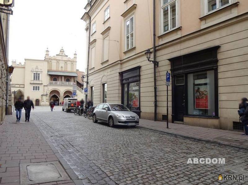 Lokal użytkowy Kraków 40.00m2, lokal użytkowy do wynajęcia