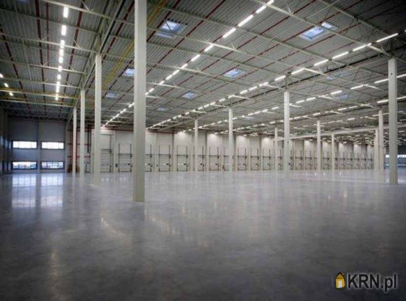 Lokal użytkowy Błonie 25 000.00m2, hale i magazyny do wynajęcia
