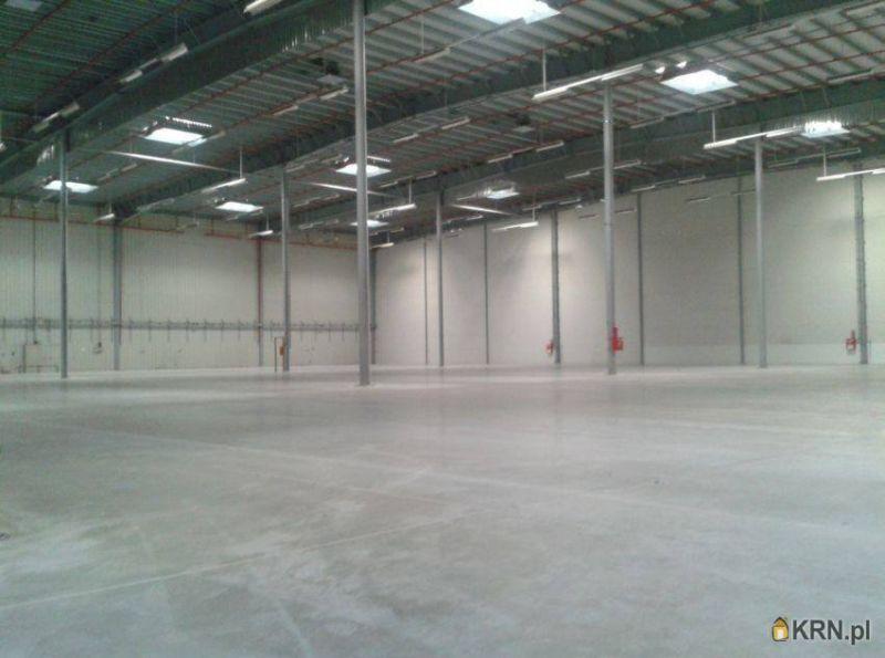 Lokal użytkowy Bronisze 1 200.00m2, hale i magazyny do wynajęcia