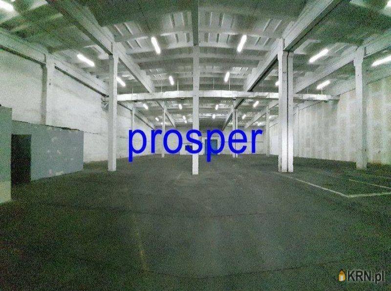Lokal użytkowy Zabrze 1 500.00m2, hale i magazyny do wynajęcia