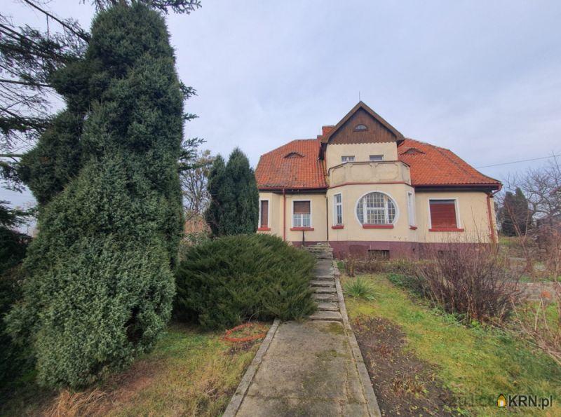 Dom Rychliki 400.00m2, dom na sprzedaż