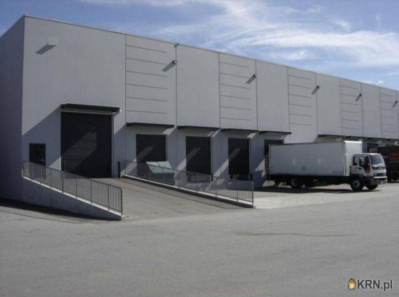 Lokal użytkowy Robakowo 100 000.00m2, hale i magazyny do wynajęcia