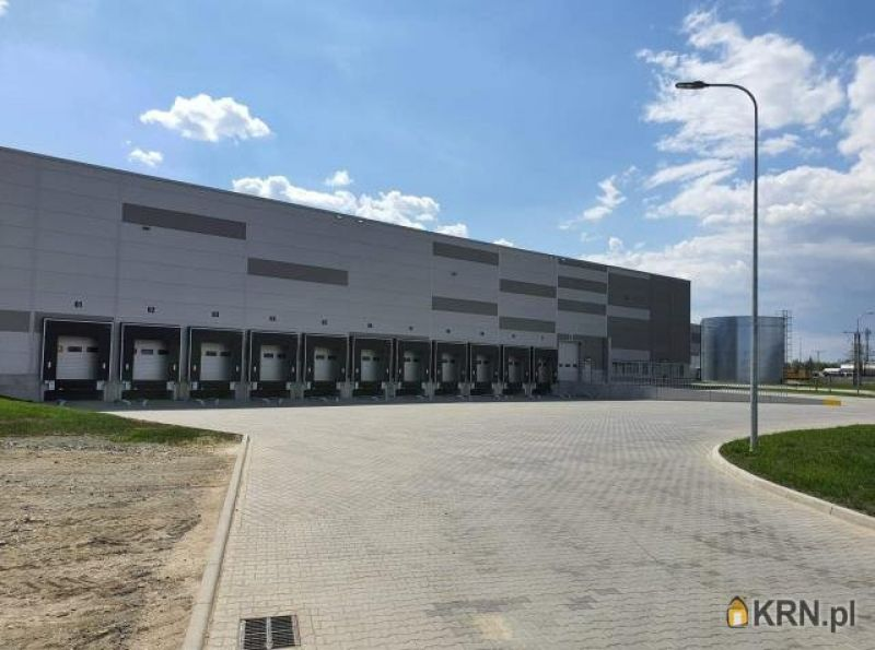 Lokal użytkowy Wrocław 9 000.00m2, hale i magazyny do wynajęcia