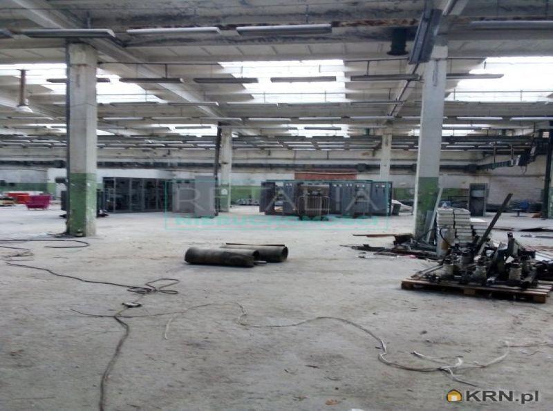 Lokal użytkowy Błonie 7 770.00m2, hale i magazyny na sprzedaż