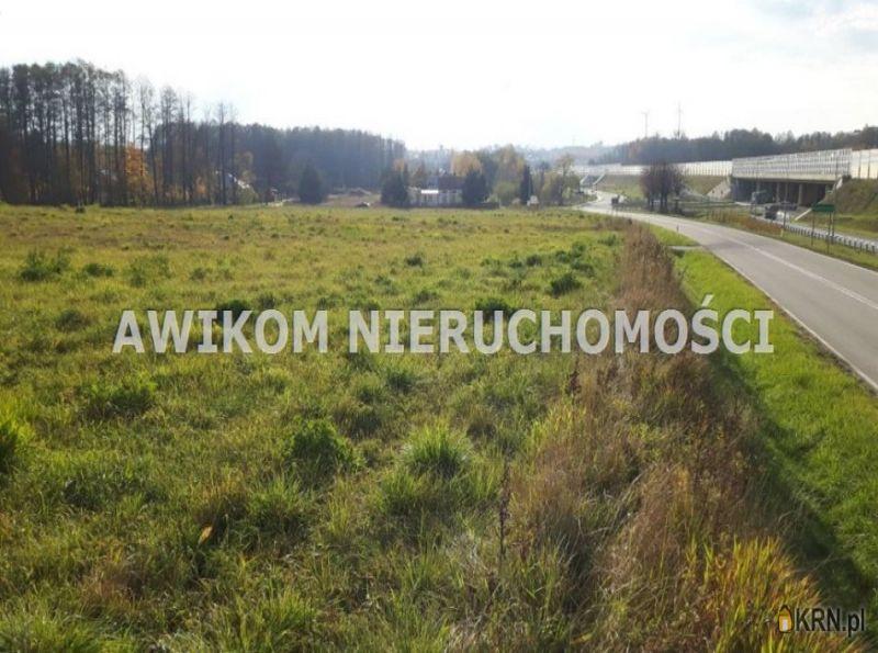 Działka Radziejowice 16 959.00m2, działka na sprzedaż