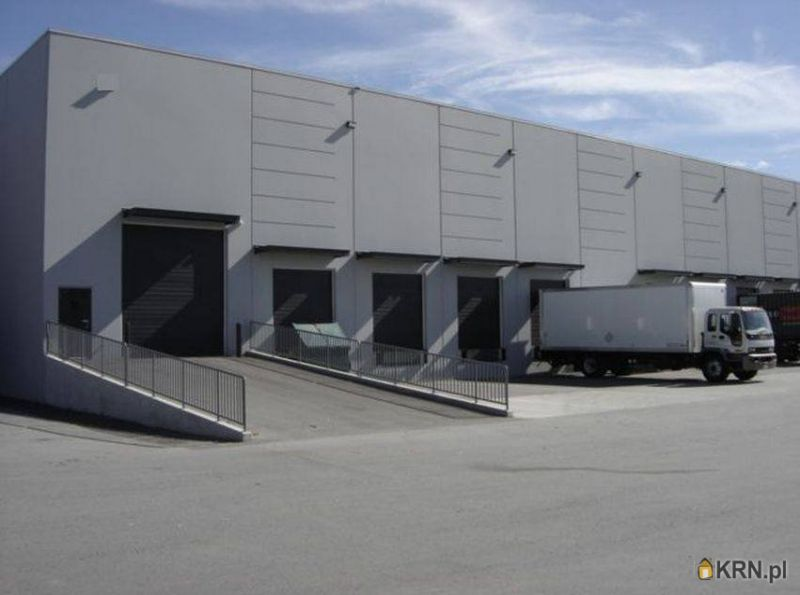 Lokal użytkowy Kalisz 1 380.00m2, hale i magazyny do wynajęcia