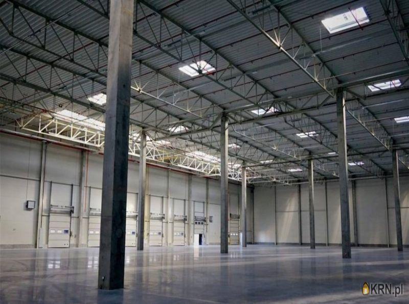 Lokal użytkowy Dobrzykowice 3 000.00m2, hale i magazyny do wynajęcia
