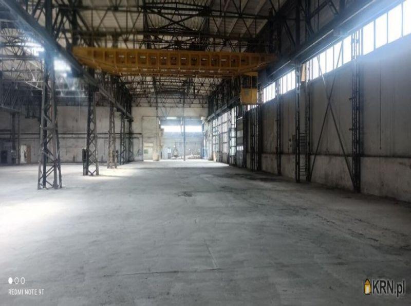 Lokal użytkowy Zabrze 4 000.00m2, hale i magazyny do wynajęcia
