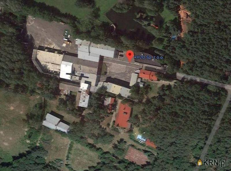 Lokal użytkowy Chociszew 23 878.00m2, lokal użytkowy na sprzedaż
